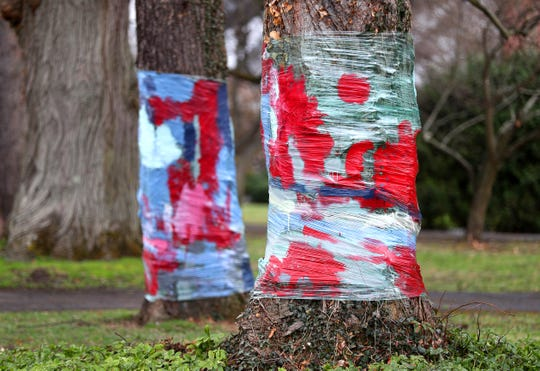 Residents in this Brighton neighborhood wrapped their trees with painted clear plastic to show their support in the fight against the coronavirus.