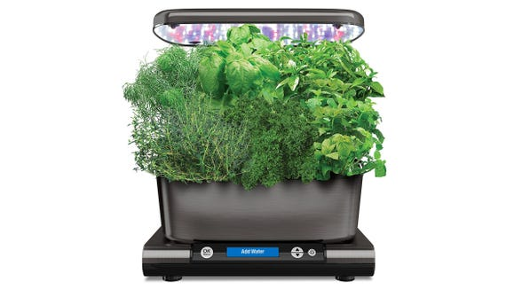 Aerogarden has built in LEDs and reminds you when to water, so growing herbs is easy.