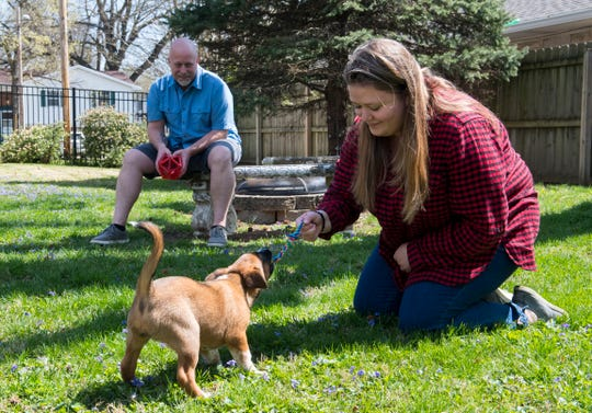 """Jim Clark, back and daughter Jamie Clark, front, plays with Maggie, the puppy they recently adopted from It Takes A Village No-Kill Rescue Friday afternoon, April 3, 2020. The Clarks decided it was a good time to adopt since more time is being spent at home due to the state's """"Stay-at-Home"""" executive order from Gov. Eric Holcomb due to the COVID-19 pandemic."""