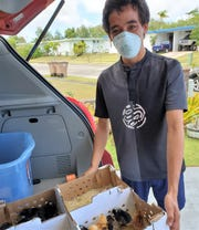 GIdeon Tyquiengco shows off his batch of day-old chicks, courtesy of Guahan Sustainable Culture.