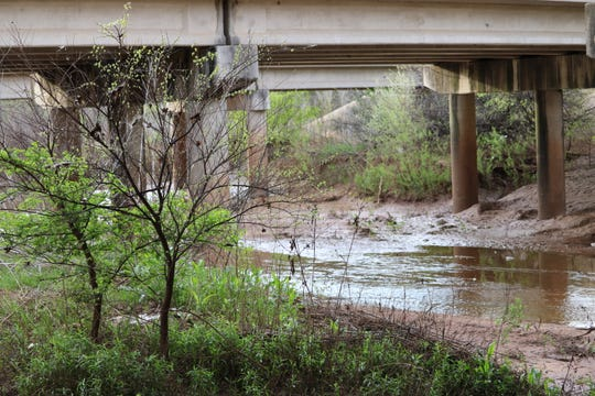 Texas Master Naturalists encourage you to explore the great outdoors during a shelter-in-place. Experience nature's beauty, such as sights captured from under a bridge, while on walks, hikes outside.