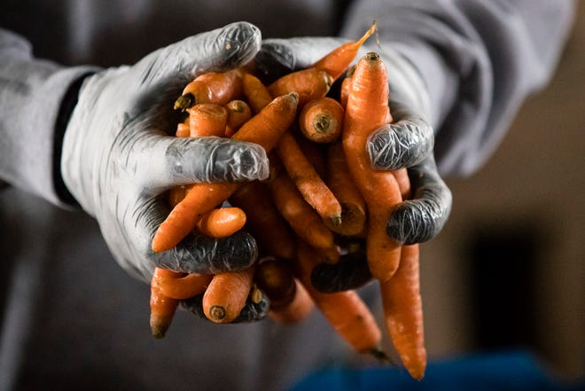 A Philabundance volunteer holds carrots during a food distribution to furloughed federal workers and their families in January.