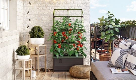 With the City Jungle from BioGreen, even the smallest sunny spot can become a healthy garden.
