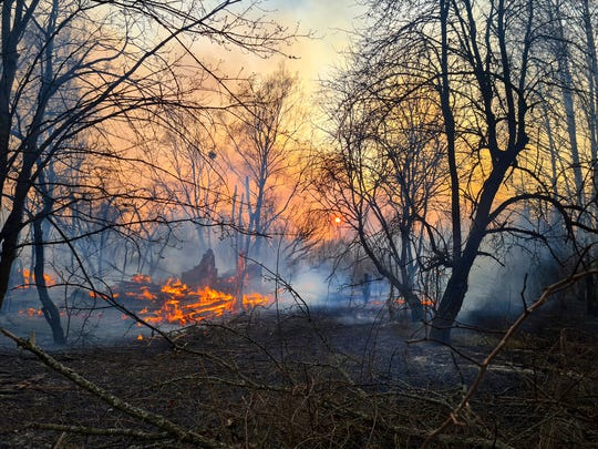 A view of a forest fire burning near the village of Volodymyrivka in the exclusion zone around the Chernobyl nuclear power plant, Ukraine, Sunday, April 5, 2020.