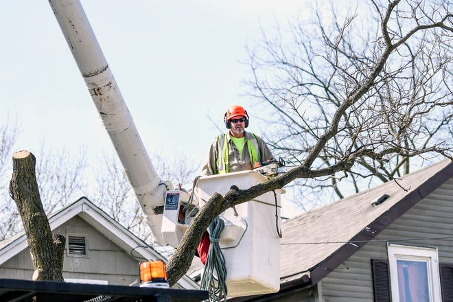 A City of Lansing crew member works on trimming trees along Oakland Avenue near the Capitol Avenue intersection on Monday, April 6, 2020, in Lansing.