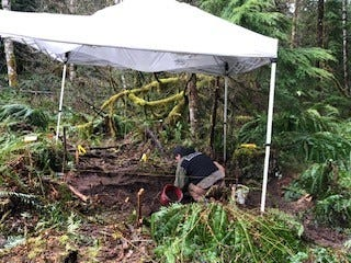Linn County Sheriff's office is investigating after human remains were discovered east of Sweet Home on Friday, April 3, 2020.