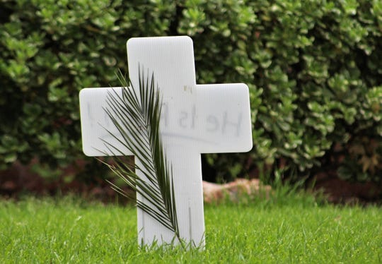 """A cross with a palm leaf at a home of Woodrdige Drive in Abilene. The cross will be turned Easter morning to show the words """"He Is Risen!"""" The location of the cross also shows how green Abilene is this Easter, after record rainfall the first three months of the year."""