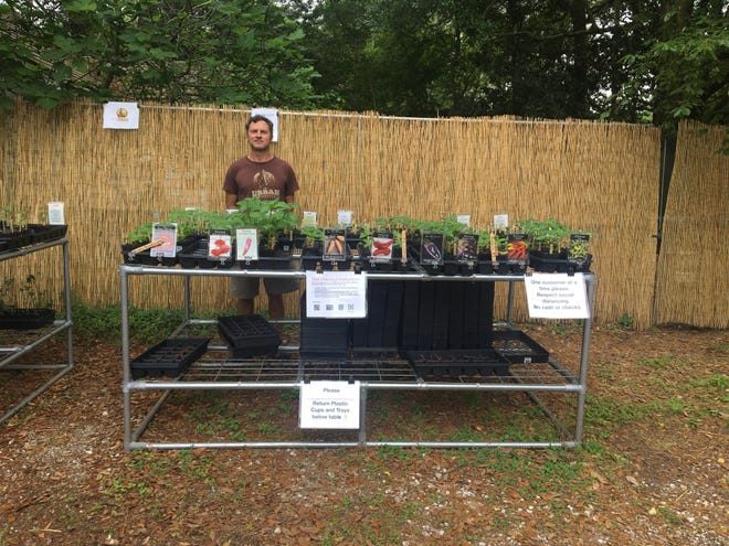 Lil Urban Naturalist, neighborhood garden centers, are popping up in the Saint Streets. The Urban Naturalist owner Marcus Descant created them to keep people safe and sane. The plants available help one another build a healthy ecosystem. Descant hopes to help educate people on the importance of having diversity and native plants in a yard, which encourages insect and bird activity.