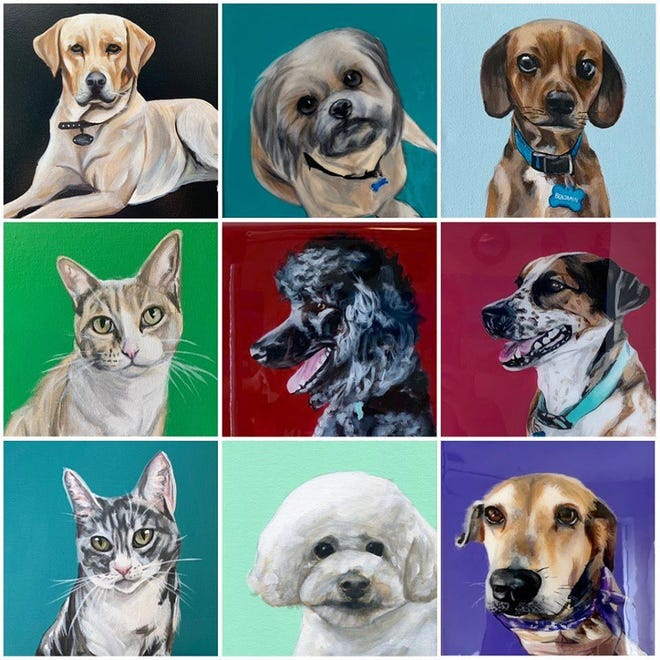 Nine months ago local artist Kristen Hofmeister found her artist niche - painting pets.
