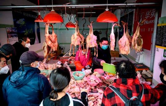 China and its exotic-animal wet markets are incubators of human diseases like coronavirus