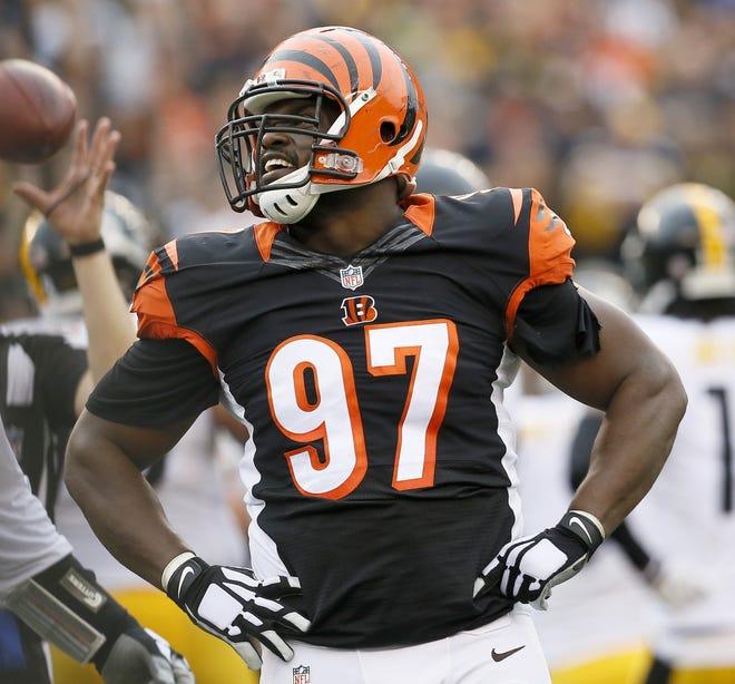 Cincinnati Bengals defensive tackle Geno Atkins in 2015. This is the current uniform the Bengals have worn since 2004.