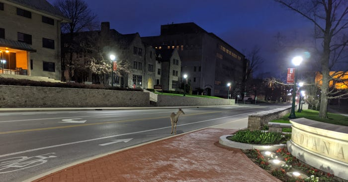 Stunned by coronavirus, a college town slowly awakens to a surreal new normal