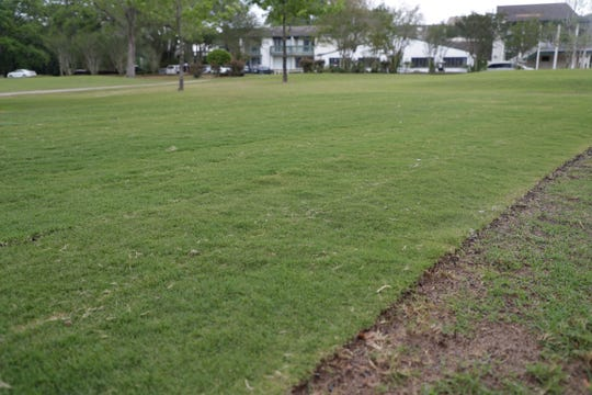 Under the new ownership of Jimmy and Lisa Graganella, some tee boxes like the one at hole one are being replaced as they work to improve Killearn Country Club.