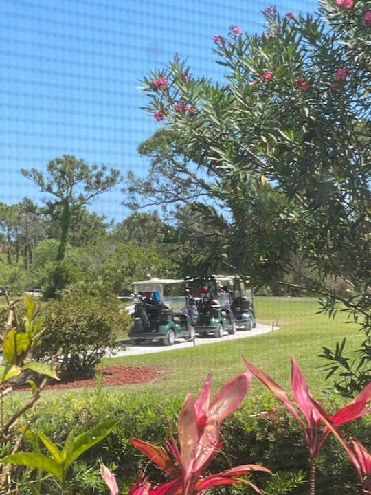 From his back porch, Summerfield resident Leonard Pittler took photos of golfers and carts lined up at the eighth green at the Champions Club in Stuart.