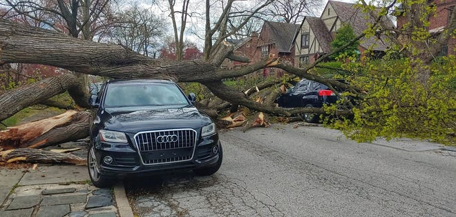 Large tree fell on several vehicles on Peyton Road in York City Thursday, April 9, 2020. Trees and wires were down across York County as a series of fast moving cells move though with high winds. Photo by John Pavoncello