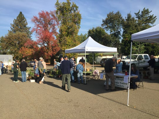 A past plant sale takes place on Shasta College campus.