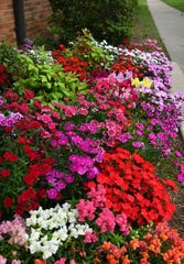 The colors of Spring brighten an area around the Hardin Administration Building at Midwestern State University.