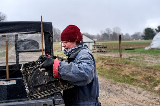 Rebecca Titus loads a box of potatoes into her vehicle at Titus Farms on Thursday, April 9, 2020, in Leslie. When the coronavirus outbreak started, the farm set up direct sales through its online store.