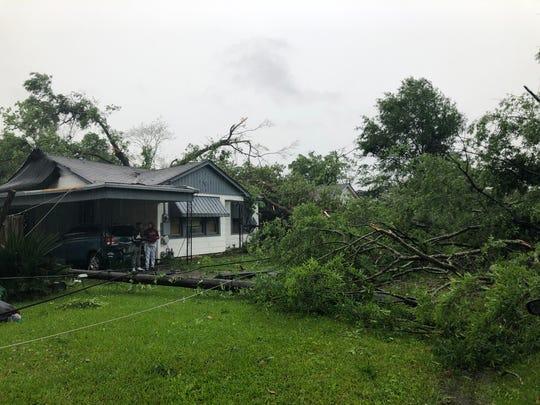 A tree down at Riverbend near Lazarre.