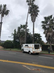 Oxnard police closed Channel Islands Boulevard for hours Sunday afternoon between C and J streets after a stolen truck crashed into a palm tree. They hoped to reopen the road by around 4 p.m.