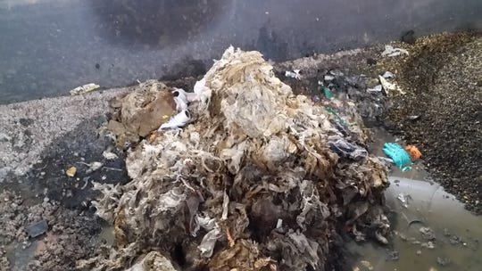 Wipes and paper towels make up much of the debris screened from   wastewater at a Fort Collins treatment facility.
