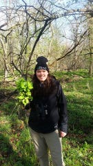 A Red-tail Land Conservancy volunteer holds garlic mustard,  a common invasive plant, at McVey Memorial Forest, one of Red-tail's properties.