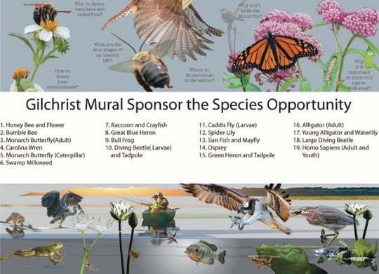 "This colorful brochure accompanied the ""Sponsor a Species"" fundraising letter."