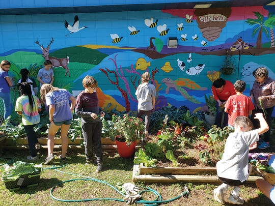 Students harvest vegetables and weed the beds at Gilchrist. The mural behind them was painted by Amanda Whitaker's fifth grade students many years ago.
