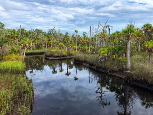 At 80,000 acres, the St. Marks National Wildlife Refuge is larger than Orlando.