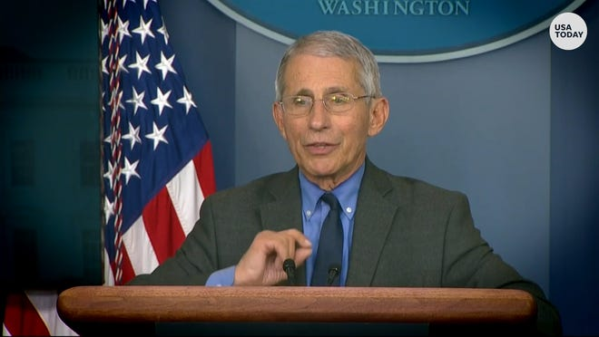 Dr. Fauci tries to clarify 'poor choice of words' over coronavirus timeline criticism