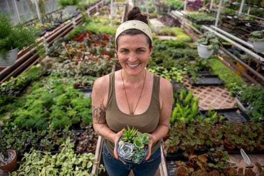 Rachel Nisch, owner of Graye's Greenhouse in Plymouth, posted a list of the tomato varieties the greenhouse is growing this year so customers can plan for their own gardens.