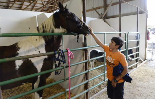 A visitor to the horse barn pets a horse at the Sandusky County Fair in August 2018. The Sandusky County Fair is scheduled to take place Aug. 25-30 this year.