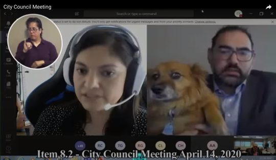 Araceli Guerra of the city's technology department and District 1 city Rep. Peter Svarzbein and his pup Pumpkin participate in Tuesday's online El Paso City Council meeting.