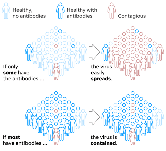 Illustration of herd immunity