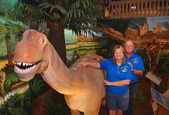 Donna and Steve Cayer operate the Museum of Dinosaurs and Ancient Cultures in Cocoa Beach, which has been closed since March 17. They are standing by a life-sized replica of a Camarasaurus.