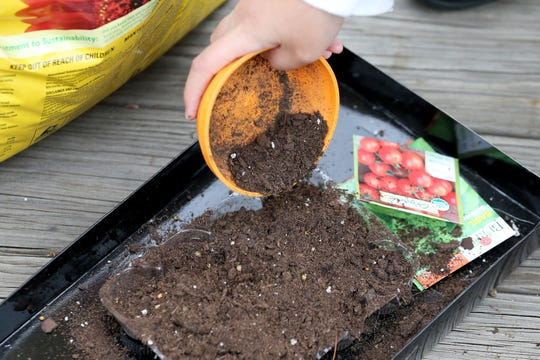 Lucy Castro, 10, sprinkles dirt on freshly planted tomato, basil and pepper seeds, Tuesday, April 14, 2020, at their home in Anderson Township, Ohio.
