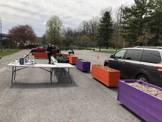Ithaca Children's Garden distributed 200 houseplants as part of the Community Grows projects in the ICG@Home program created during the COVID-19 pandemic. The plants were distributed during a two-and-a-half hour drive-thru event at the children's garden on Tuesday.
