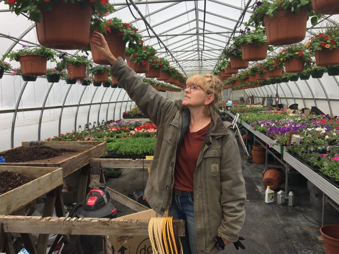 Laura Morehouse is anxious about the future of her Unadilla Township nursery, Tulip Tree Gardens, shown Monday, April 13, 2020, as Michigan remains under a stay at home order and nurseries are deemed non-essential.