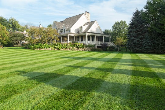 Indulge your lawn obsession: Go for lawn striping.
