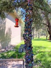 The Peace Garden Honor Tree: the final destination for the butterflies painted by local artist Jane Lynch during the  food drive campaign that helped restock the shelves at the Lincoln County Food  Bank.