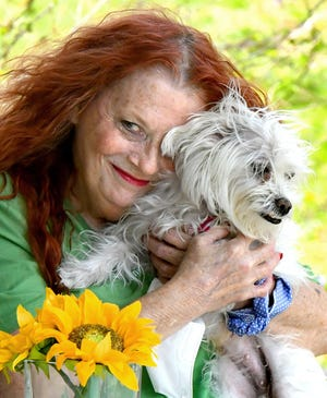 General Manager Renee Rocco cuddles with her Maltese Luna, at Zachery's Abused Canine Housing for Seniors (ZACHS) Wednesday, April 15, 2020. Bill Kalina photo
