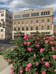 Blooming flowers in downtown Shreveport.