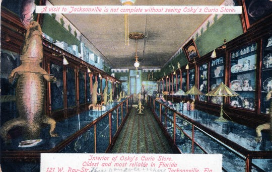 An old postcard from Osky's Curio Store in Jacksonville.