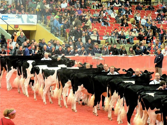 Will there be a World Dairy Expo this fall?  Hopefully, yes.