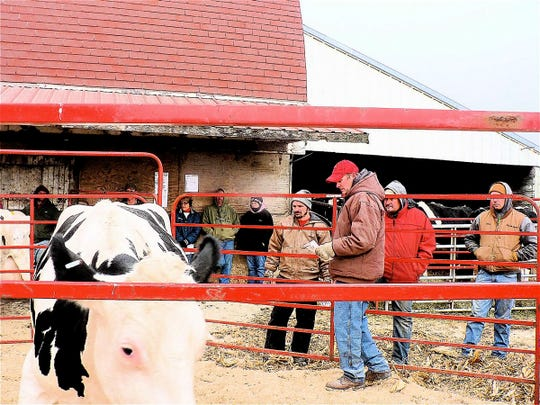 A dairy farmer will find it difficult to sell cows at a sale today because of the overloaded market.