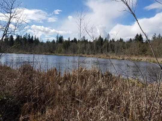 Carpenter Lake, near Kingston.