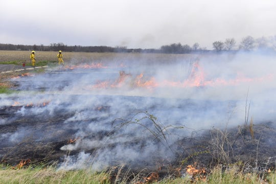 The controlled burn took less than an hour Wednesday. New growth is expected to take over the field in about two weeks.