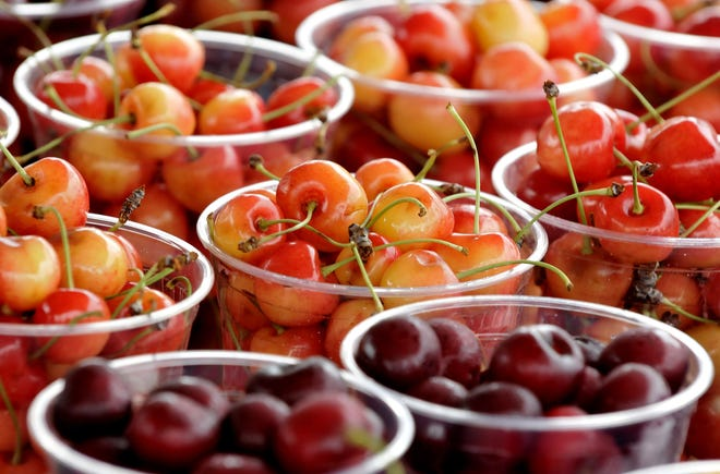 Sweet cherries at the 89th National Cherry Festival in July 2014.