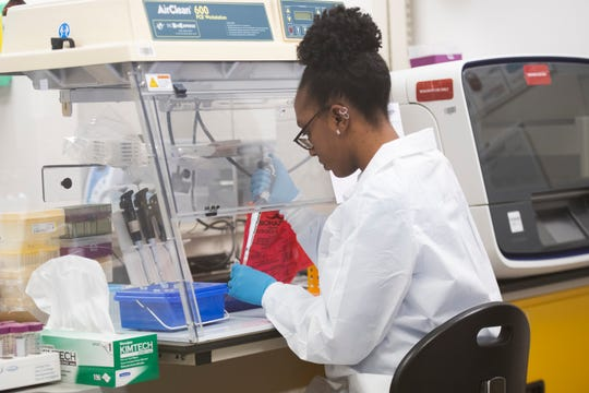 Kinu Rill prepares to process samples from COVID-19 tests to find out their results at Precision Genetics in Greenville Wednesday, April 15, 2020. Precision Genetics is working with Prisma Health to complete testing for patients.