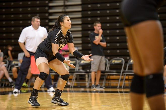 Former Purdue defensive specialist Linnea Rohrsen will be the head volleyball coach at Twin Lakes.